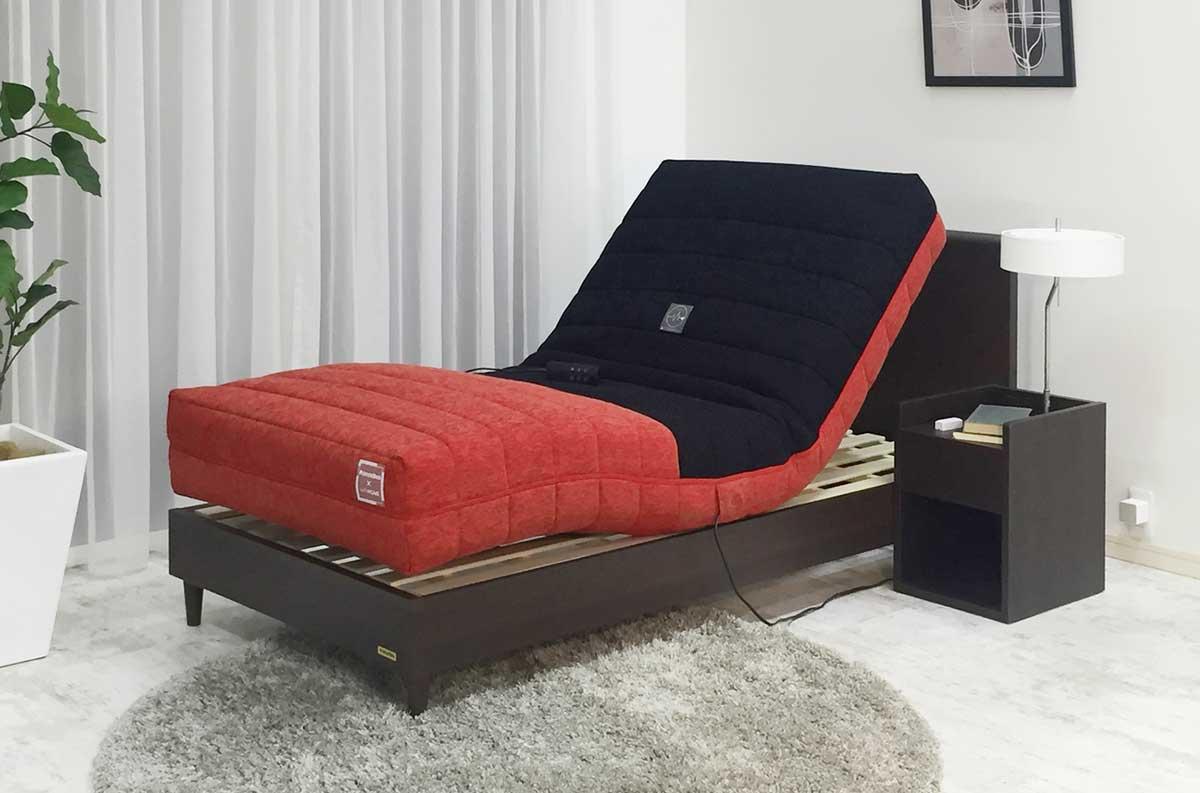 フランスベッド 高精度睡眠モニタリング機能付電動リクライニングマットレス