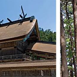 島根県「神々の国しまねの木」県産材の魅力を探る